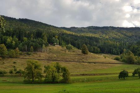 Kriška gora - Gozd, pogled na Kriško goro.jpg