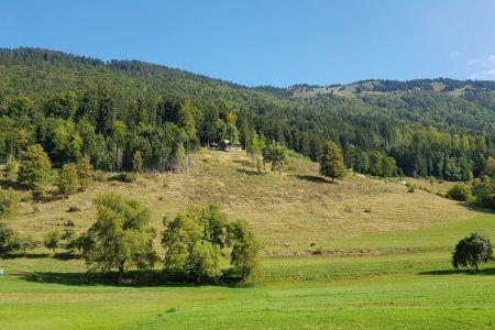 Kriška gora - pogled z Gozda na Kriško goro.jpg