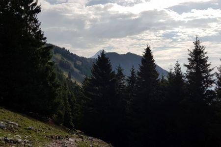 Kriška gora - pogled proti Storžiču.jpg