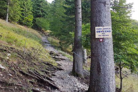 Kriška gora - pašno območje.jpg