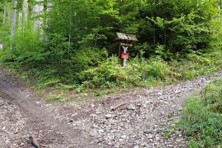 Kriška gora - križišče s potjo za Koćo v Gozdu.jpg